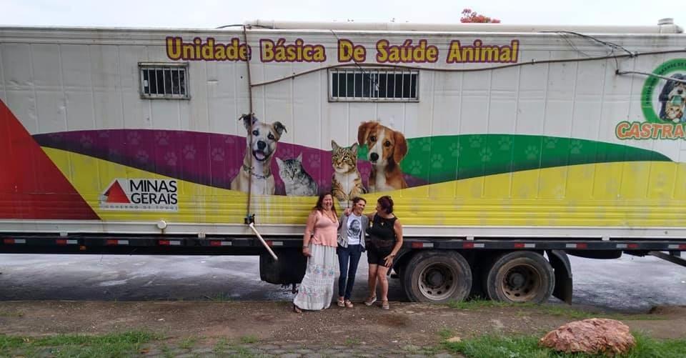 Castração de cães e gatos acontece no início de janeiro a preços populares