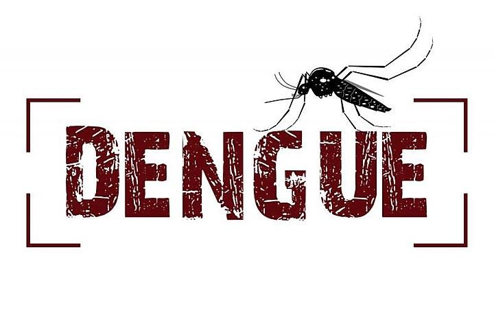 Minas Gerais tem quase 6 mil novos casos de dengue em uma semana